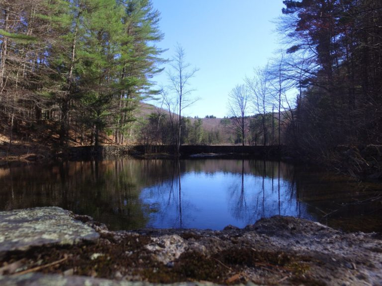 {Travel New England} Fun Facts about Madame Sherri