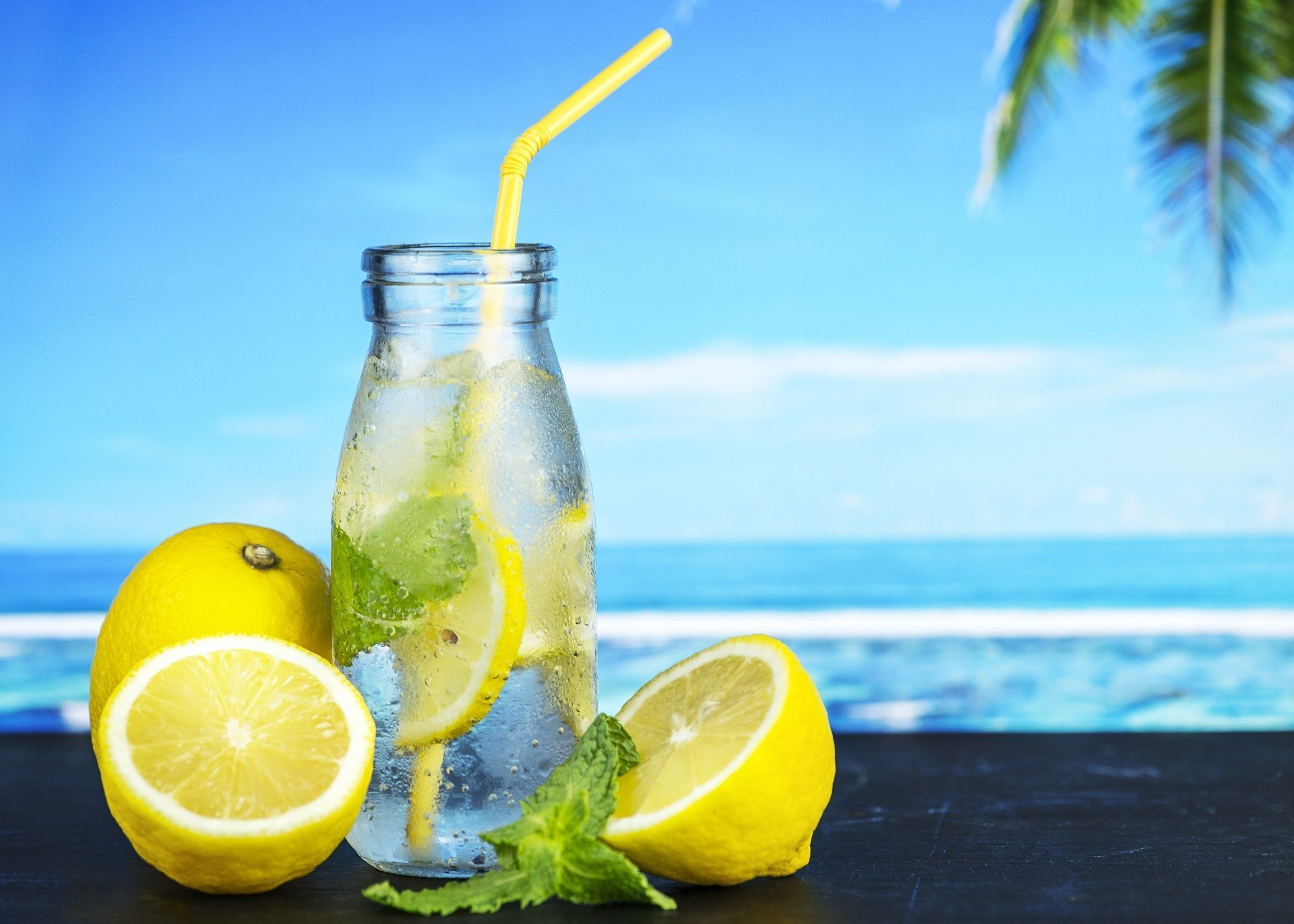 The Best Hydracy® Recipes and Fruit Infuser Water Bottles