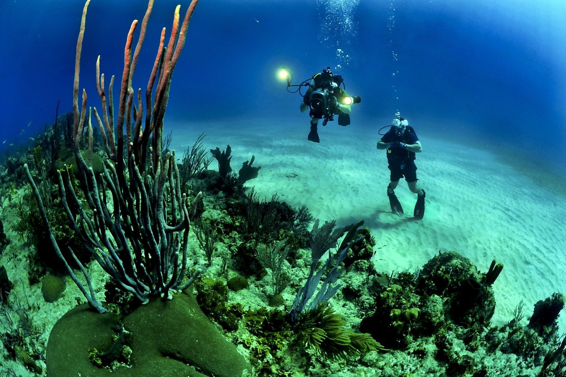 Packing Tips For A Scuba Diving Holiday
