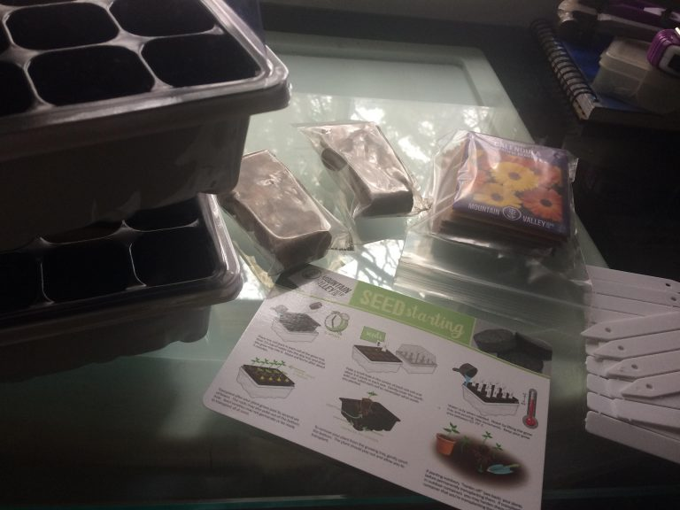 Herb Garden Indoor Kit & How To