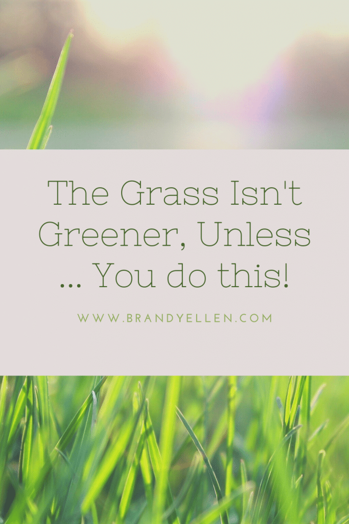 Pinterest Friendly image with grass and sun in the background and words the grass isnt' greener unless you do this
